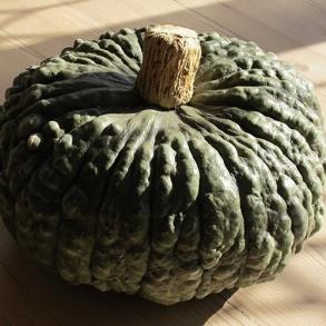 29-october-2012-005
