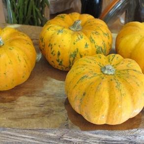 29-october-2012-010